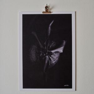 arte shop online3784