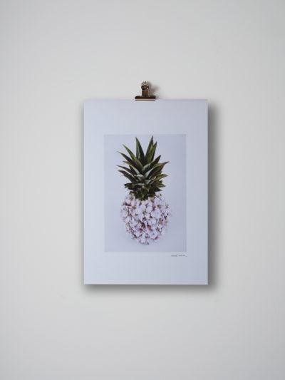 flor de piña lamina