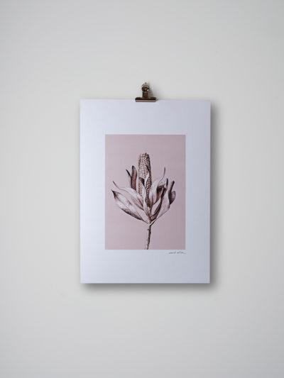 inflorescencia lamina