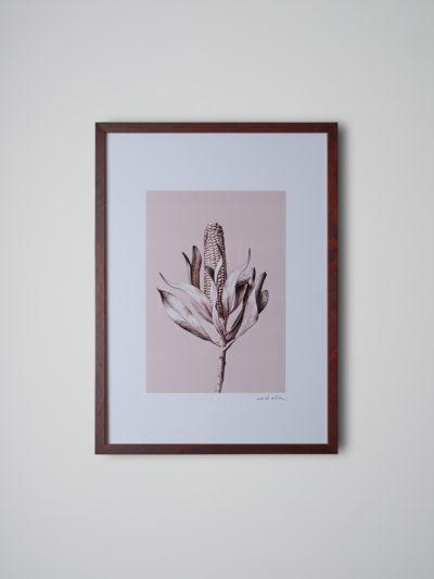 inflorescencia nogal
