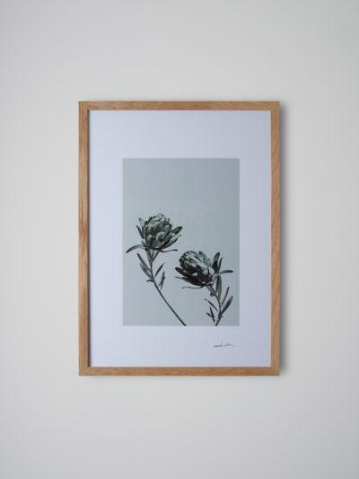 inflorescencia2 roble